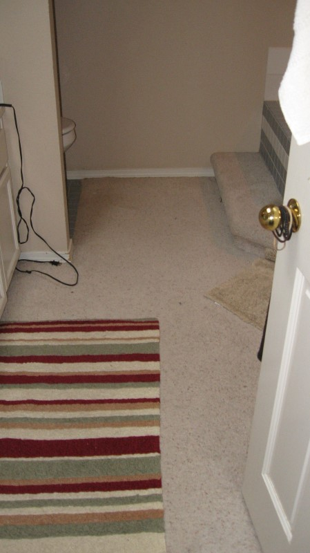 before-construction-carpet-in-master-bathroom