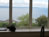 view-from-blue-ridge-in-seattle